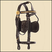 Essential Comfort Plus Bridle