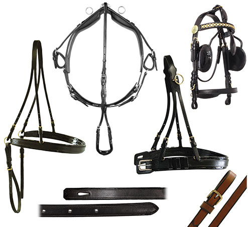 Essential Plus Harness Includes