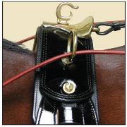 Essential Saddle